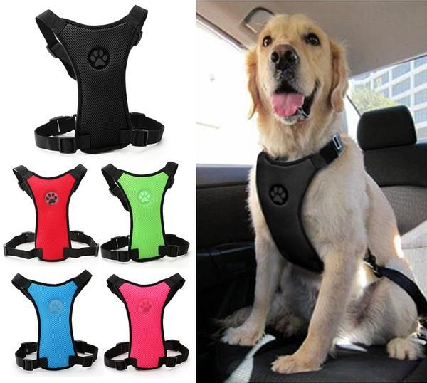 Want to ditch the carrier for a safety harness? Give your dog a soft and comfy safety harness that's just the right size! Five colors to choose from and three different sizes for the perfect fit.