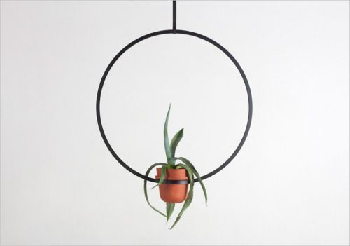 I think the Kulper Belt series of hanging pots designed by Katerina Kopytina  look like modern sculptures.