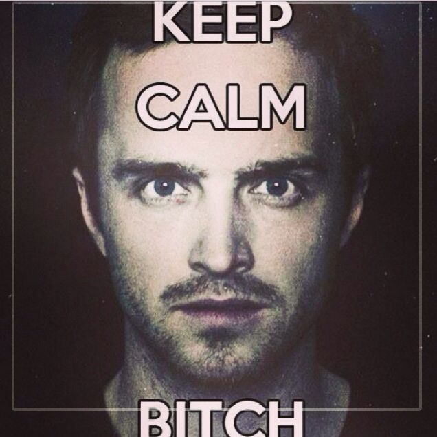 Jesse Quotes Breaking Bad: 66 Best BREAKING BAD Images On Pinterest