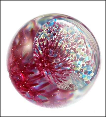 Ocean Coral Pink by Caithness Glass Product Code CG 251 at www.jamespirie.com $44.42