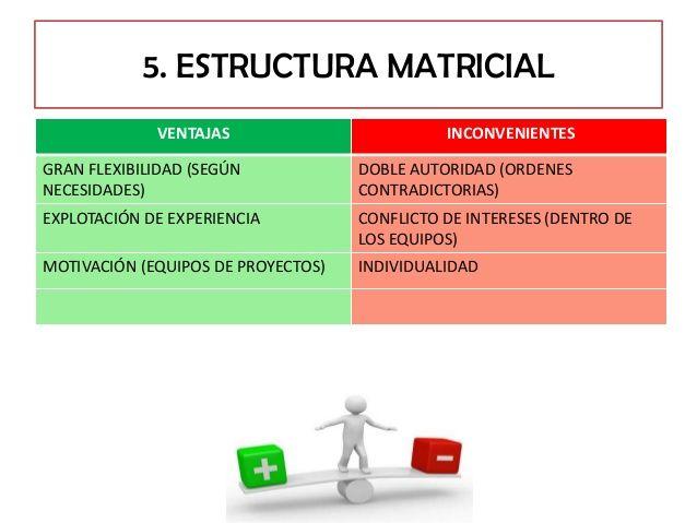 ventajas y Desventajas de estructura matricial.
