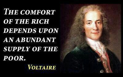 Voltaire Quotes Gorgeous 11 Best Voltaire Images On Pinterest  Voltaire Quotes Wisdom And
