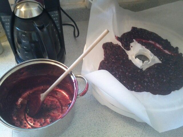 Black currant fruit leather.  Bring to boil currants with just enough water to cover bottom of pan.  Bring to boil for 1 minute to get the juices flowing, remove from heat, let stand till cool, spread on wax paper or parchment in your dehydrator.  Process to your manufacturer's instructions.