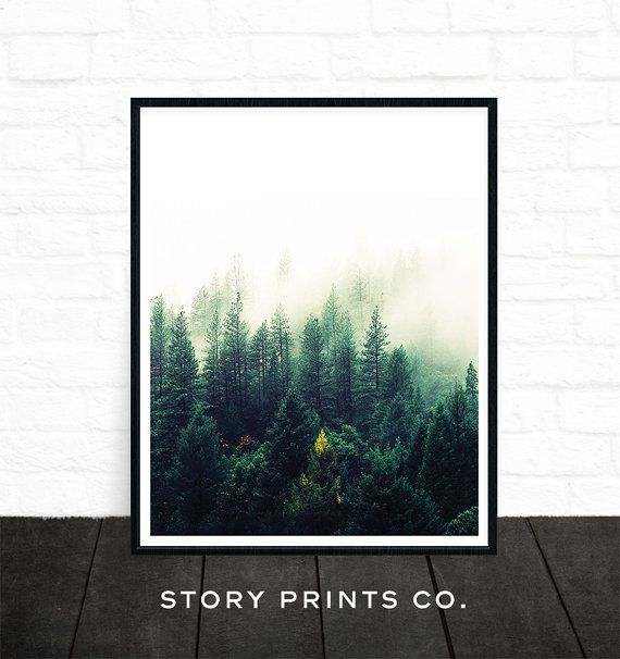 Forest Print Forest Photography Nature Prints by StoryPrintsCo