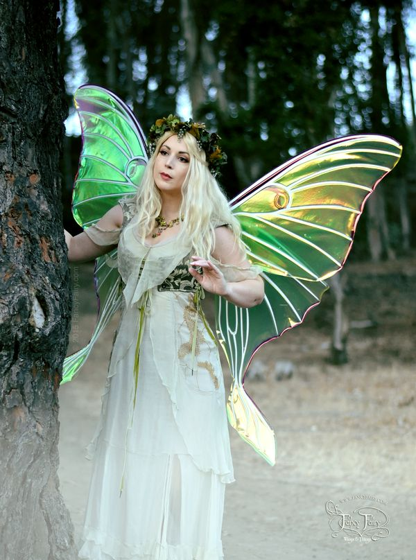 79 Best Fairy Wings Images On Pinterest  Fairy Wings