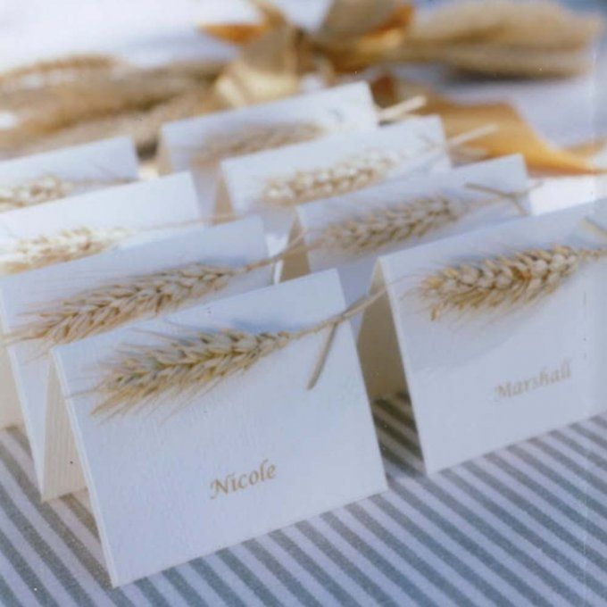 Des cartons nominatifs naturels                                                                                                                                                                                 Plus