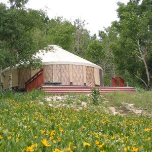 Rainier Eagle Yurt - The true cost of building a yurt