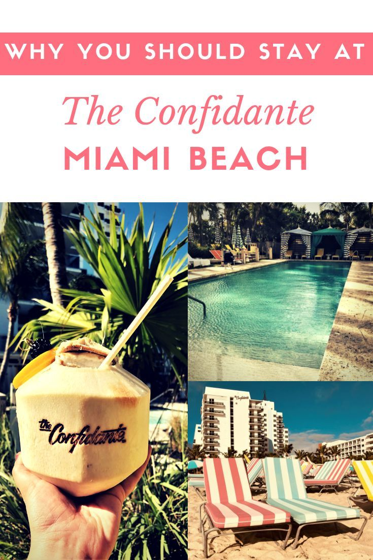 The Confidante Miami Beach Our New Year S Eve Stay The Florida Travel Girl Miami Beach Hotels Florida Travel Miami Beach