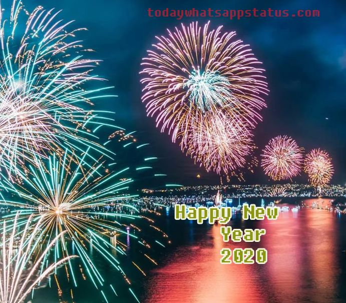 Happy New Year Status The New Year S Celebration Is Imminent With Images New Year Status Happy New Year Status Funny New Year