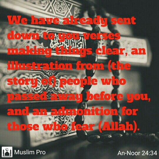 find this pin and more on islam by trenice aikens