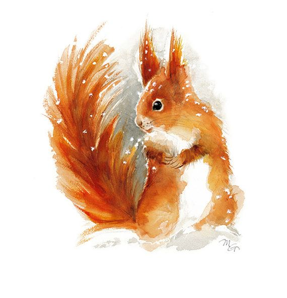 Aquarelle de l'écureuil – copie de peinture à l'aquarelle. Impression d'artwork. La nature ou Illustration d'animaux. Rouge et Orange