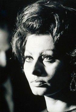 Sophia Loren by Dezo Hoffmann