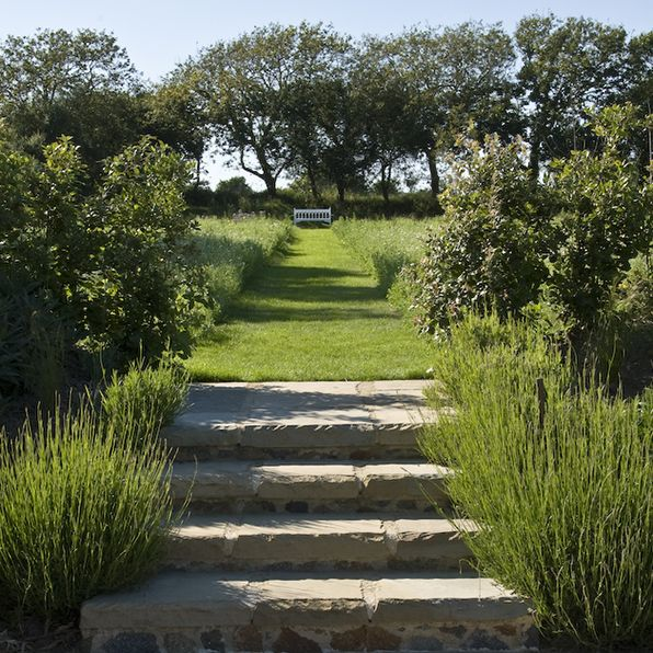 Stone steps lead up into a wild flower meadow. The mown path leads down to a garden seat which draws the eye down to this end of the garden. Guernsey Garden - Acres Wild