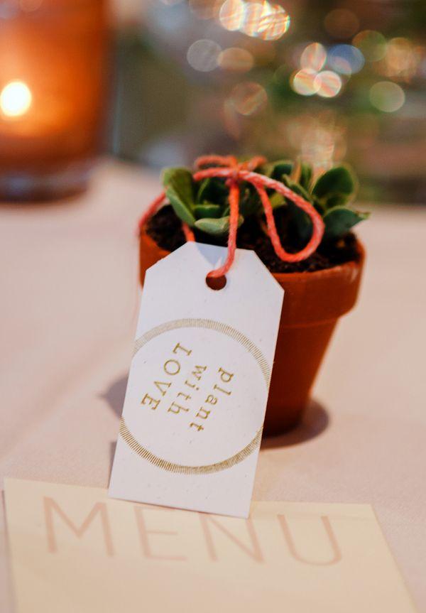wedding favors ideas do it yourself%0A Succulent Favors  Wedding FavoursDiy