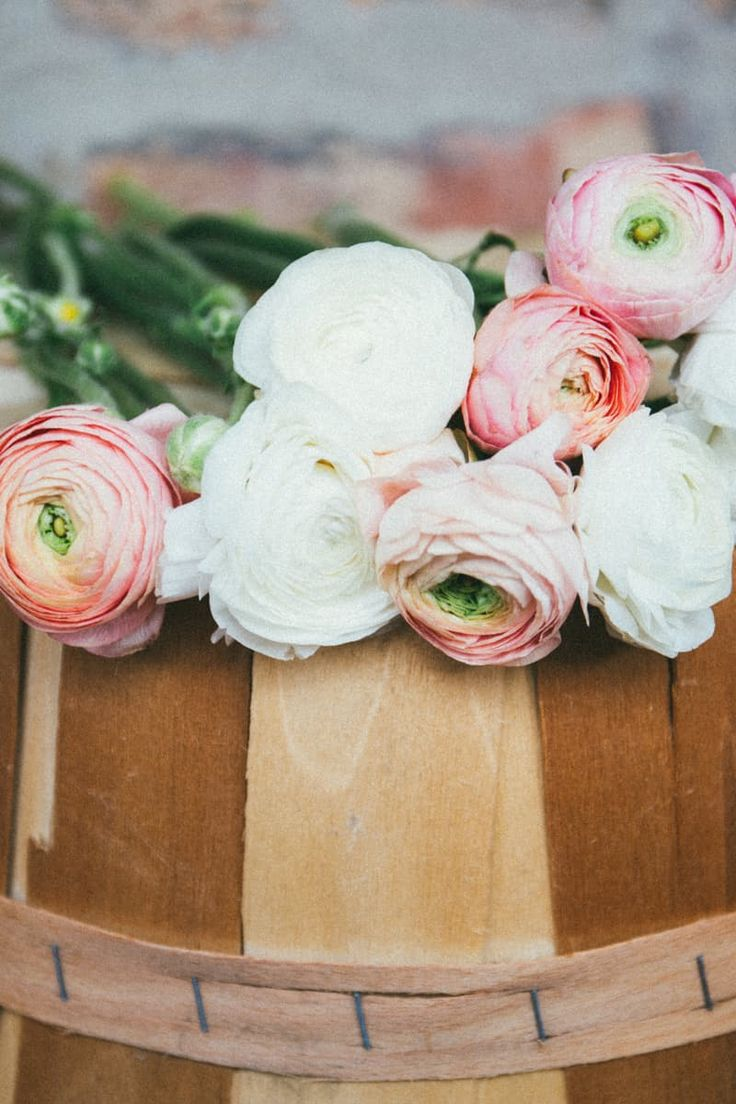 Brown Wooden Tree Log With Pink and White Flowers on Top