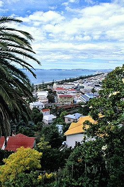 Napier, NZ. The art deco capitol and an unexpected gem.  We have seen all of New Zealand except for Napier.  A must see trip.