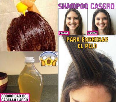 sitio de buena reputación moda más deseable costo moderado Comunidad del cabello largo: ¡SHAMPOO CASERO Para engrosar ...