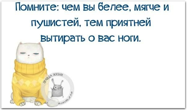 Правда Жизни   Юмор, Мотивация, Сарказм, Цитаты   VK