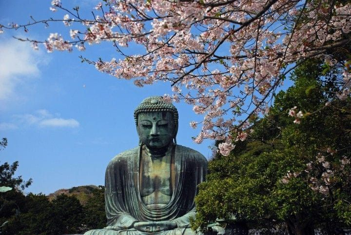 Located an hour from Tokyo in Kanagawa Prefecture, Kamakura is home to the Great Buddha Hall and a myriad of other historic buildings. This comprehensive guide explains all you need to know to enjoy Kamakura to the fullest!