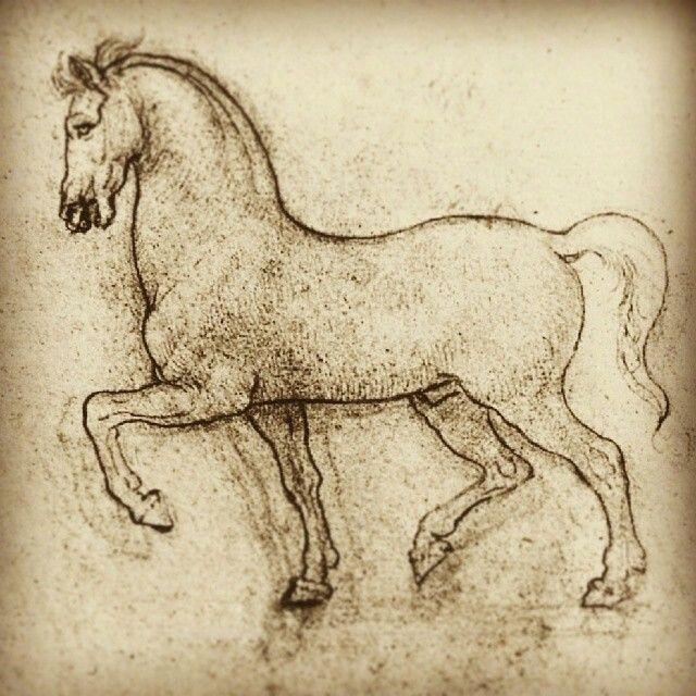 horse drawing by da vinci | Horse | Pinterest