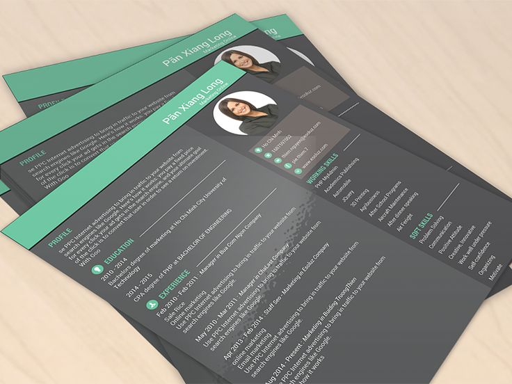 Vilancer - Creative CV Template 23 for everyone, in Green - sample usar unit administrator resume