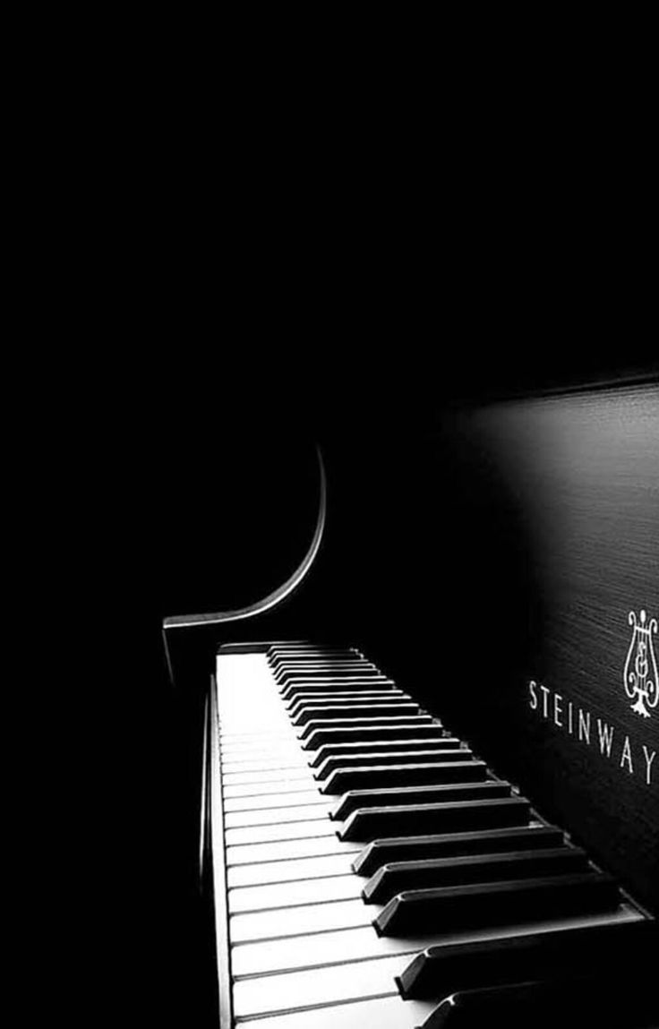 grand piano black and white wwwpixsharkcom images
