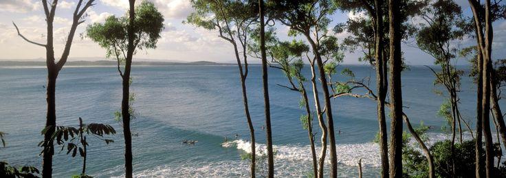 @Tropicsurf Noosa Heads, Australia. Discover the surfing secrets of Australia's east coast. Bookings: info@tropicsurf.net  www.tropicsurf.net