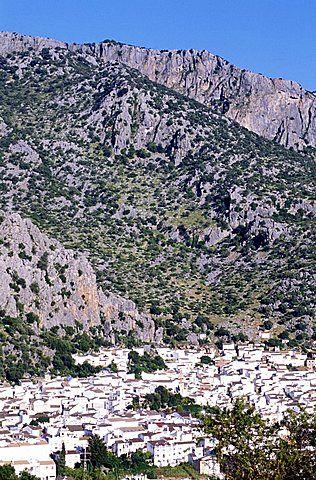 España, Andaloucia, Pueblos Blancos , Road, Grazalema