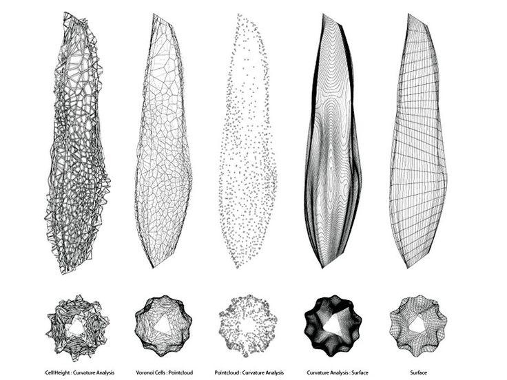 44 best images about voronoi shapes on pinterest