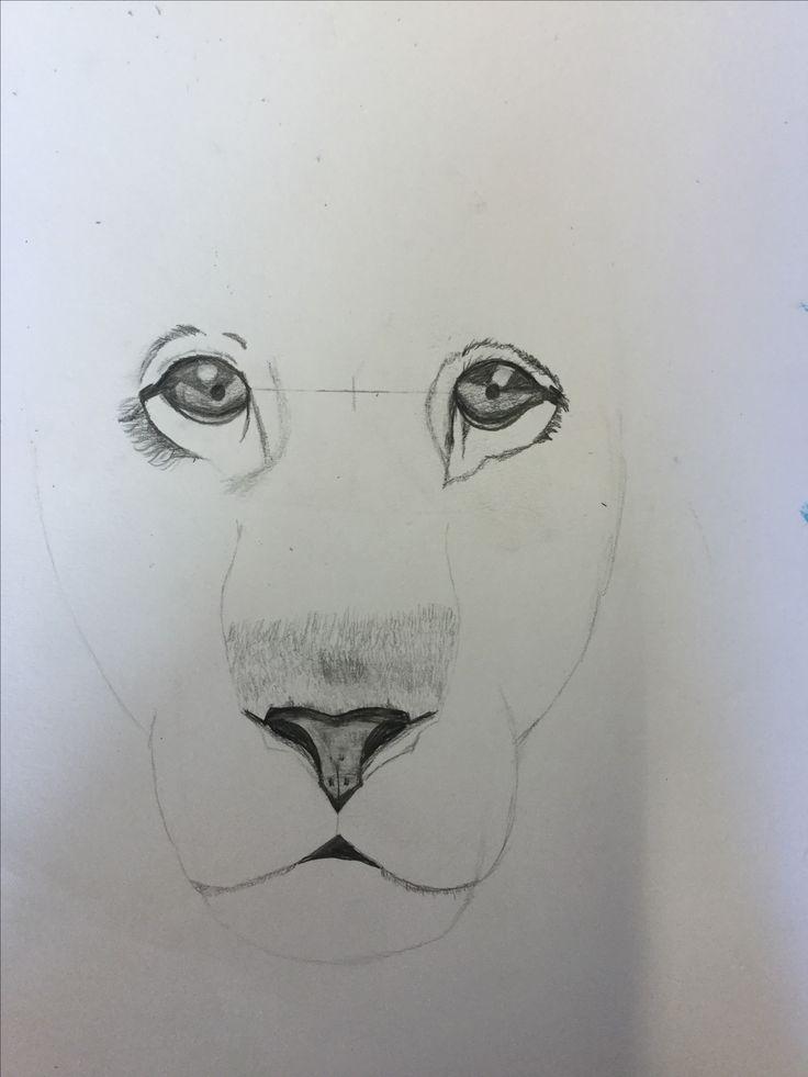 Dit is het laatste wat ik heb getekend op het grote vel ik heb de ogen verbetert door ze groter te maken en ze beter te arceren, nu begonnen met de neus en meer vorm te geven aan het hoofd.😶