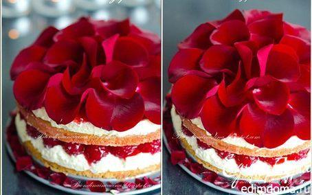 Торт «Парадиз» | Кулинарные рецепты от «Едим дома!»