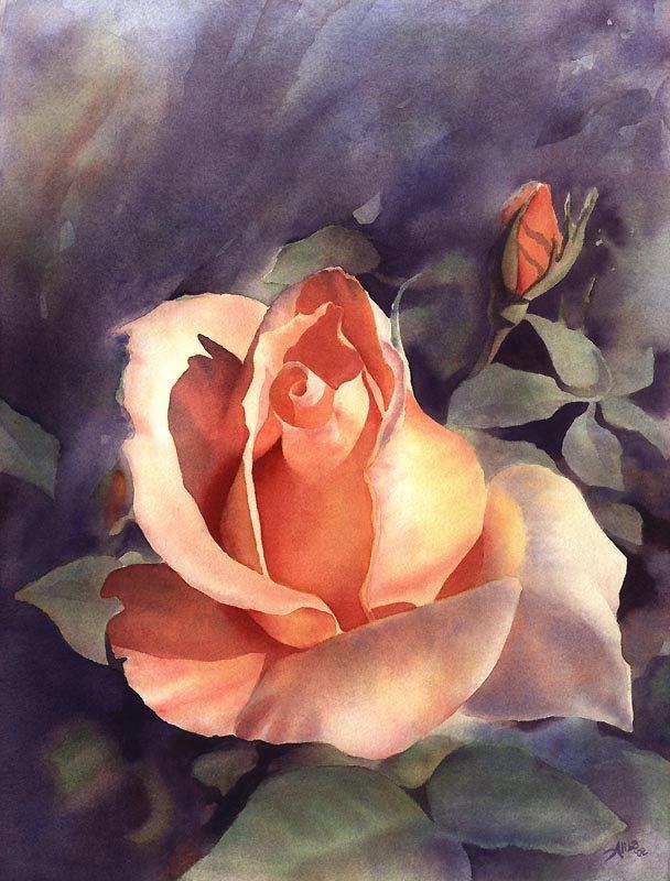 Original Watercolor Rose  Painting  Alisa Wilcher