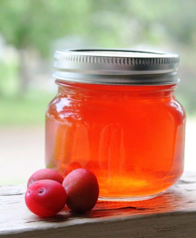 Oklahoma Sand Plum Jelly Recipe - Jackatessa