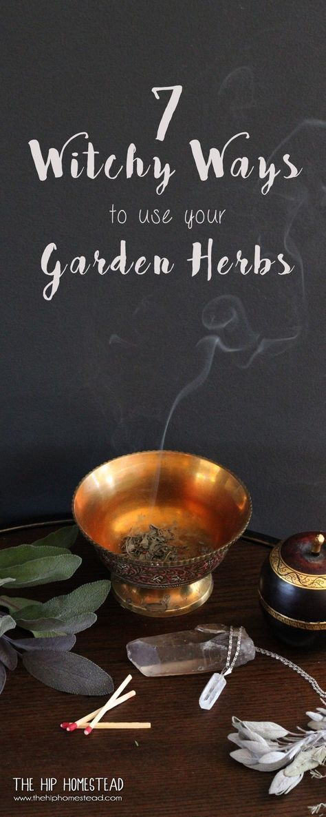 7 Witchy Ways to use your Garden Herbs- The Hip Homestead #witch #witchy #witches
