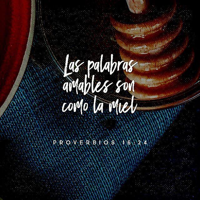 """""""Las palabras amables son como la miel: dulces al alma y saludables para el cuerpo."""" Proverbios 16:24  http://bible.com"""