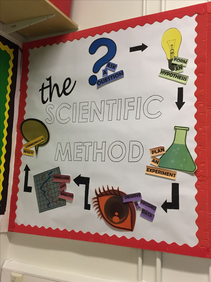 'The Scientific Method' Classroom working wall