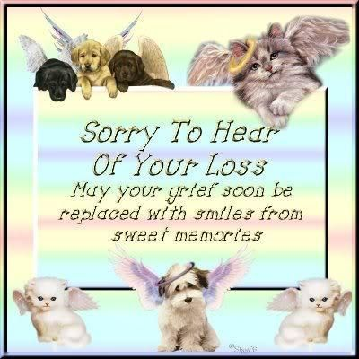 SodaHead - Prayer Request for Karen E, and the loss of her beloved dog Tripp.