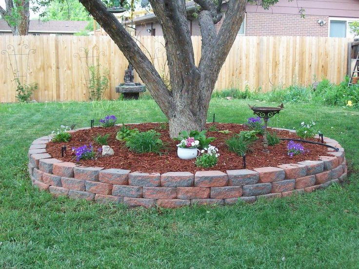 landscaping around trees   The setup: Installing a masonry surround for a tree eases mowing and ...