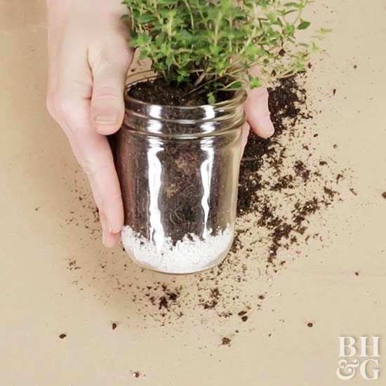 With just a few supplies and a few minutes, you can plant your favorite flavors in a jar.