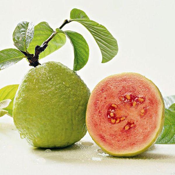 Guava Kabuğu sert olan meyve hoş bir koku ve tada sahiptir. Anavatanı Meksika, Orta Amerika ve Güney Amerika'nın kuzeyidir.
