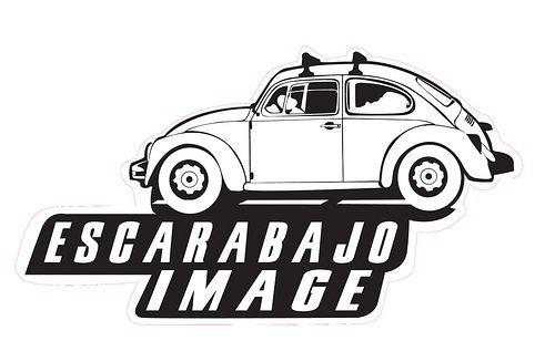 Logo de escarabajo Images