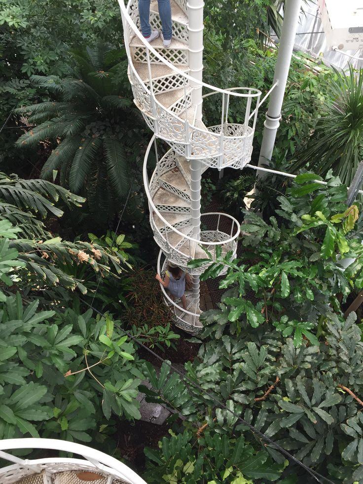 Spiral stair Botanic garden greenhouse Copenhagen
