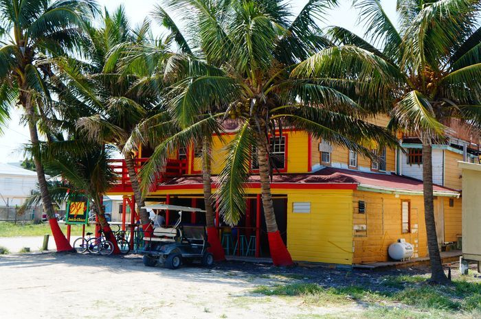 Best Ambergris Caye Restaurants: Where To Eat In San Pedro