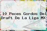 http://tecnoautos.com/wp-content/uploads/imagenes/tendencias/thumbs/10-peces-gordos-del-draft-de-la-liga-mx.jpg Draft 2015. 10 peces gordos del Draft de la Liga MX, Enlaces, Imágenes, Videos y Tweets - http://tecnoautos.com/actualidad/draft-2015-10-peces-gordos-del-draft-de-la-liga-mx/