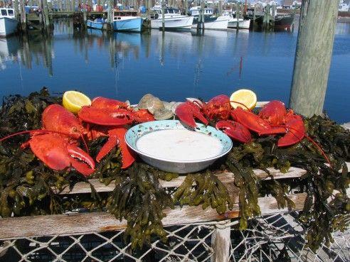 Dinner made easy! Ship Overnight Live Maine Lobster Dinner Special
