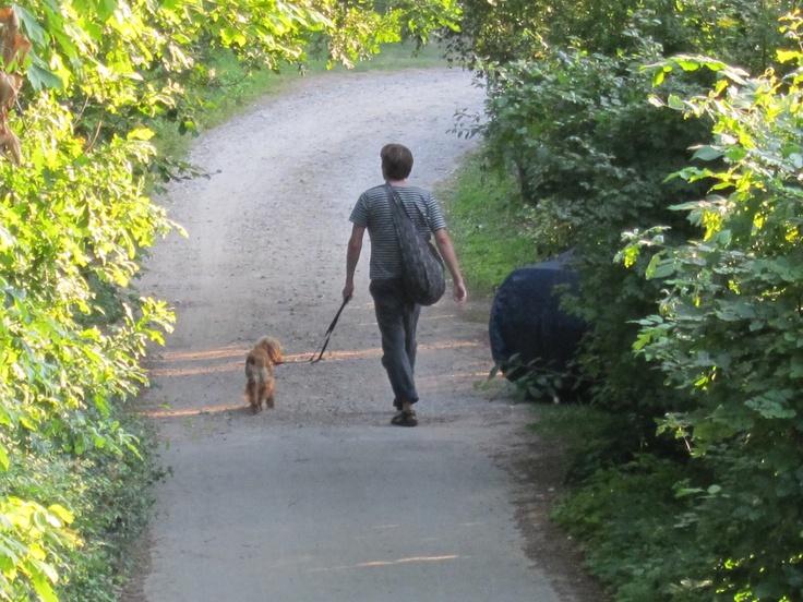 Mand og hund  Copyright ©Katjagry Media 2012