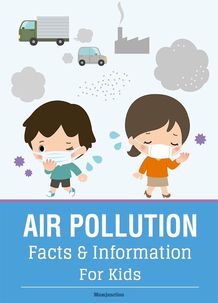 Air Pollution Facts And Information For Kids