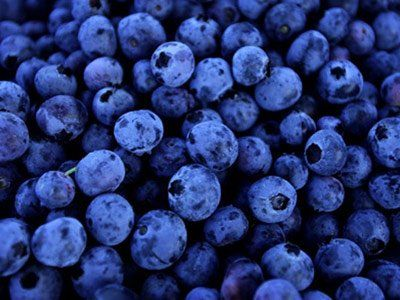 Blueberries don't improve night vision