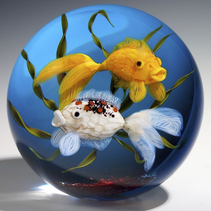 367 best paperweights images on pinterest for Rainbow koi fish
