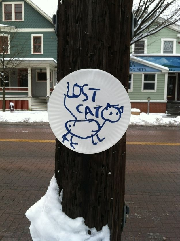 Yes, I've definitely seen this cat.   22 Hilarious And Disturbing Missing Cat Posters